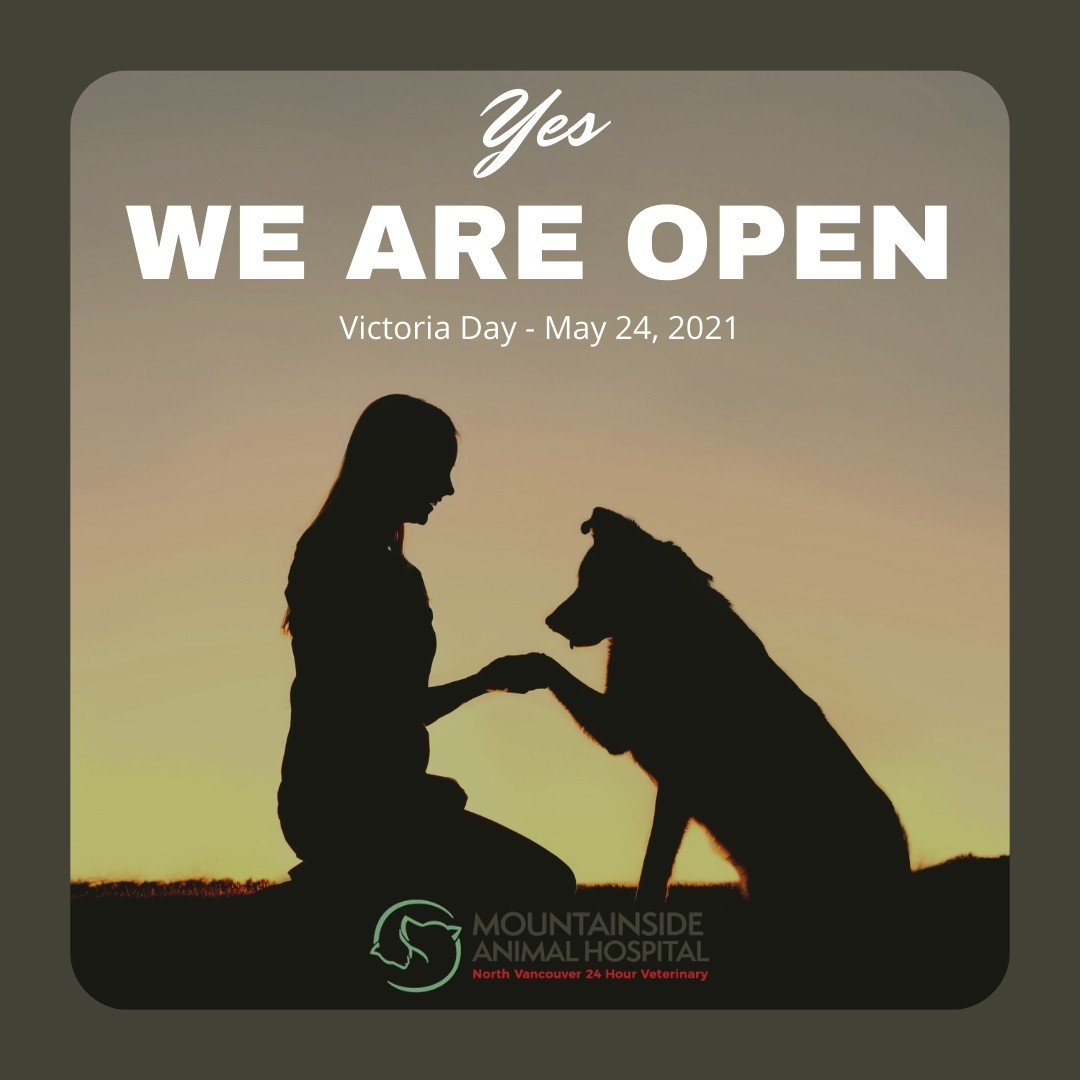 We're Open Victoria Day Long Weekend