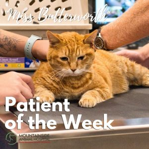 Patient of the Week – Miss Butterworth